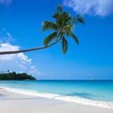 Playa en una isla tropical foto de archivo libre de regalías