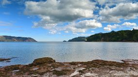 Playa escénica de Kaitarakihi en Huia Foto de archivo