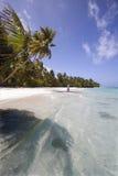 Playa exótica Foto de archivo libre de regalías