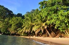 Playa exótica Fotos de archivo