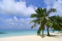 Playa exótica en Maldives Imagen de archivo libre de regalías