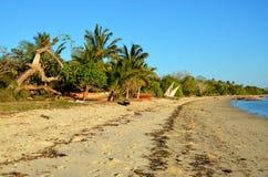 Playa exótica en Zanzibar, Tanzania fotografía de archivo
