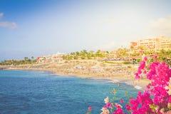 Playa Fanabe, Tenerife, Ισπανία στοκ φωτογραφίες με δικαίωμα ελεύθερης χρήσης