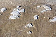 Playa fría helada Foto de archivo libre de regalías