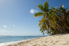 Playa Fronton στη Δομινικανή Δημοκρατία Στοκ Φωτογραφία