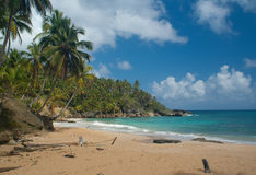 Playa Grande Royalty Free Stock Photo