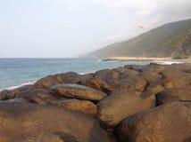 Playa Grande - Venezuela Royalty-vrije Stock Foto's