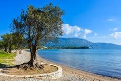 Playa griega en la isla de Corfú en el mediterráneo Fotos de archivo libres de regalías