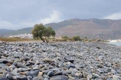 Playa guijarrosa en Creta Fotos de archivo libres de regalías