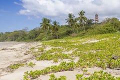 Playa Guiones沙丘和旅馆Nosara 库存照片
