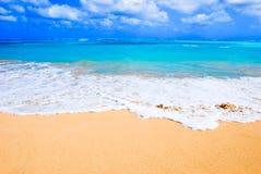 Playa hawaiana imágenes de archivo libres de regalías