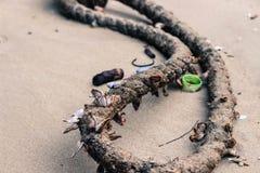 Playa hawaiana foto de archivo libre de regalías