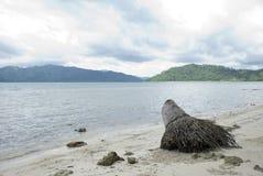 Playa hermosa Imágenes de archivo libres de regalías