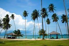 Playa hermosa con las palmeras Foto de archivo libre de regalías