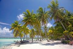 Playa hermosa de Bora Bora, Polinesia francesa, South Pacific Foto de archivo libre de regalías