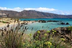 Playa hermosa de la isla de Elafonisi Imagen de archivo