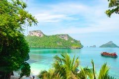 Playa hermosa de la orilla del mar/del océano con la raíz del árbol y hojas y montañas imágenes de archivo libres de regalías