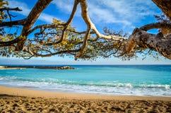 Playa hermosa de Mónaco Fotos de archivo