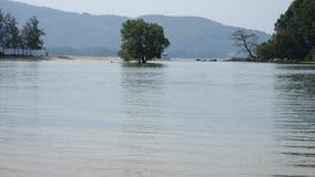Playa hermosa del paraíso en la costa de la bahía del mar de la montaña del mar de Andaman en fondo almacen de metraje de vídeo