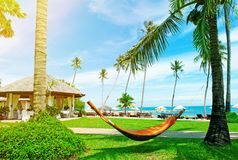 Playa hermosa Hamaca entre dos palmeras en la playa H Foto de archivo libre de regalías