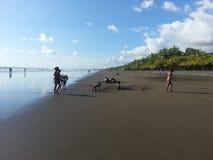 Playa ideal Fotos de archivo