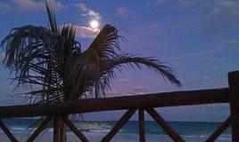 Playa iluminada por la luna por el océano foto de archivo libre de regalías