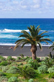 Playa Jardin (beach garden), Puerto de la Cruz Stock Photography