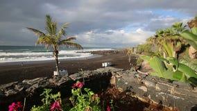 Playa Jardin,Puerto de la Cruz, Tenerife stock footage