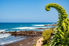 Playa Jardin - Puerto de la Cruz uno de las playas más hermosas de Tenerife Isla de Tristan imagenes de archivo