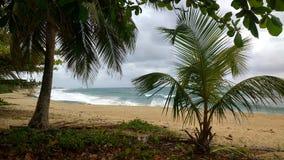 Playa Jobo ` s海滩伊莎贝拉岛波多黎各 免版税库存照片