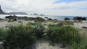 Playa Langoya, Noruega fotografía de archivo libre de regalías
