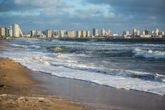 Punta del Este beach in Uruguay, Atlantic Coast royalty free stock photo