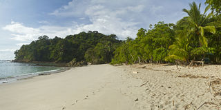 Playa Manuel Antonio & πανόραμα Punta Catedral στοκ εικόνες