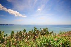Playa maravillosa con la montaña alrededor fotografía de archivo libre de regalías