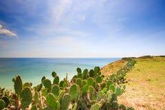 Playa maravillosa con la montaña alrededor imagen de archivo libre de regalías