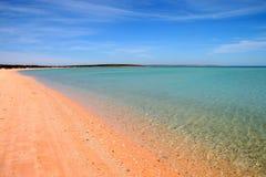 Playa, mono Mia Imagen de archivo