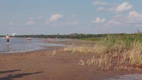 Playa no equipada en el golfo de Finlandia metrajes