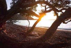 Playa Nueva Zelanda de la puesta del sol del invierno imagen de archivo