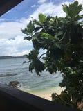 Playa ocultada Sri Lanka Foto de archivo