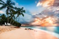 Playa pública en Cayo Levantado, República Dominicana foto de archivo libre de regalías