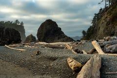 Playa pacífica rugosa foto de archivo libre de regalías