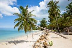 Playa, palmera y agua de mar tropicales hermosas en la isla Koh Phangan, Tailandia Fotografía de archivo