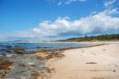 Playa pedregosa de la arena en Nueva Zelanda Foto de archivo libre de regalías