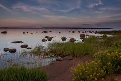 Playa pedregosa en la puesta del sol con las flores amarillas Imagen de archivo libre de regalías
