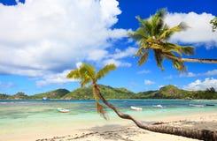 Playa perfecta en Seychelles Imágenes de archivo libres de regalías