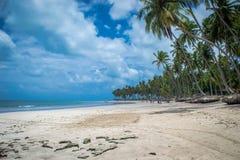 Playa-playa brasileña de Carneiros, Pernambuco Imágenes de archivo libres de regalías