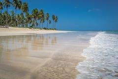 Playa-playa brasileña de Carneiros, Pernambuco Fotos de archivo libres de regalías