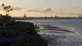 Playa por la tarde - CALIFORNIA, los E.E.U.U. de la isla de Coronado - 18 DE MARZO DE 2019 almacen de metraje de vídeo