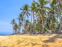 Playa Rincon στη χερσόνησο Samana Στοκ φωτογραφία με δικαίωμα ελεύθερης χρήσης