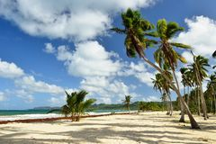 Playa Rincon beach on Dominican Republic Stock Images
